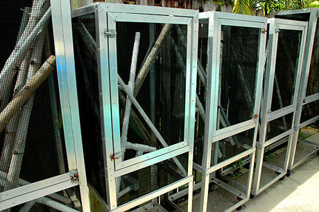 Heavy duty outdoor reptile enclosures at GiantDayGecko.com